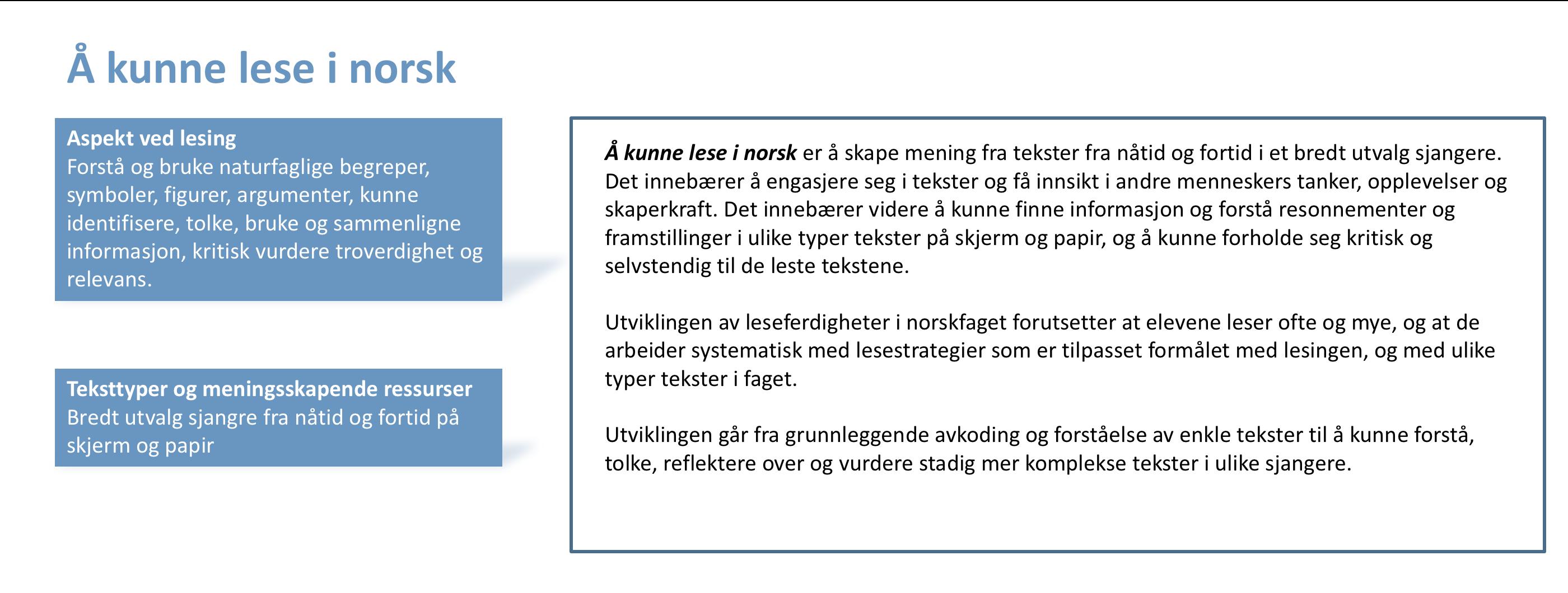 Å kunne lese i norsk